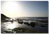 20061228 -- 8636.jpg  Canon 5D + 16-35mm / 2.8L @ 35mm, f / 8, 1/1000, ISO 100
