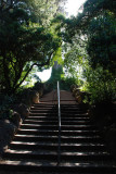 Golden Gate Park Stairs