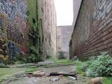 My Favorite Alleyway