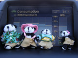 The Pandafords in a Prius