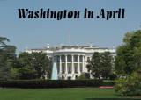 Washington, D.C. in April
