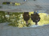 Pedestrians reflecting in puddle