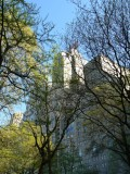 Midtown buildings seen through Central Park trees