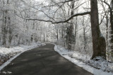 Covemont Rd. After Yesterday's Snowfall