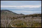 Plateau north or Roaring Meg 1