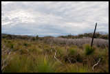 Plateau north or Roaring Meg 2