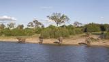 Etosha game park