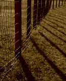 Fence With Shadows