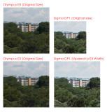Sigma DP1 - Olympus E3 Comparison 03