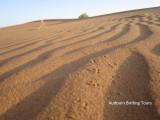 Sand tracks in the Sahara desert