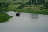 Lovely image from an elephant in Kruguer National Park