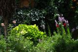 Flowered Garden