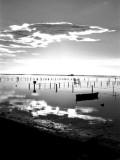 Alfacs Bay - Bahía de los Alfacs - Port dels Alfacs