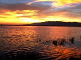 A sunset in Encanyissada - Puesta de sol en el Delte del Ebro - Posta de sol a la Encanyissada
