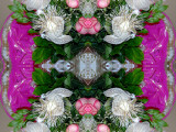 Vica flowers Jan08