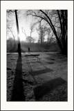 Les shadows de Vincennes (3)
