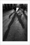 Les shadows de Vincennes (2)
