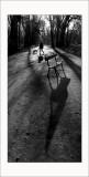 Les shadows de Vincennes