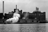Domino Sugar Plant II