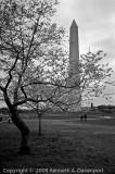 Natural & Manmade Monuments