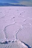 (AR8) Salt flats at Badwater, Death Valley National Park. CA