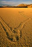 Playa scraper on the Racetrack Playa, Death Valley National Park, CA