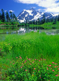 (PNW23) Mt. Shuksan, North Cascades National Park, WA
