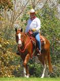 Horse and Rider1 - Nikon D200.jpg