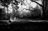 Pinhole pictures