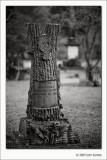 Chappell Hill Masonic Cemetery #3