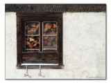 Holz mit Aussicht / wood with a view  (2888)
