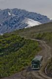 Road in Denali National Park