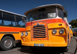 Malta's Old Buses, still in daily service.Sadly now defunct (Aug2011)