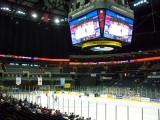 Charlotte Checkers hockey game