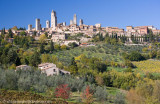 Olive trees and vineyards below San Gimignano