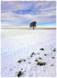 A46 snowfield