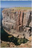Seahorse Cliff