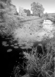 Stroudwater canal and St Cyr's Church, Gloucs.