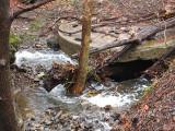Vine Creek after heavy spring rain