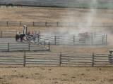 Horse corral800.jpg