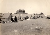 Fort Mason refugees meadow 1906.jpg