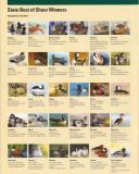Junior Duck Stamp Contests - Wheeler National Refuge