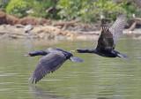Wheeler Wildlife Refuge Region - 04/14/2010