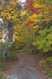 North Alabama Fall Colors - 2007