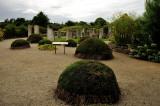 Lughnasa Garden Brigits Garden 2.jpg