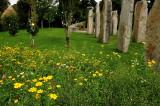 In the Summer Garden,Brigit's Garden