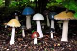 Mushroom sculpture, Brigit's Garden