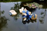 Pond sculpture - Brigit's Garden