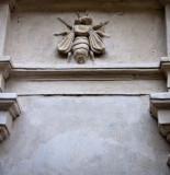 Barberini bee 1