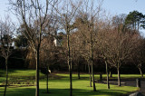 Park walk 2